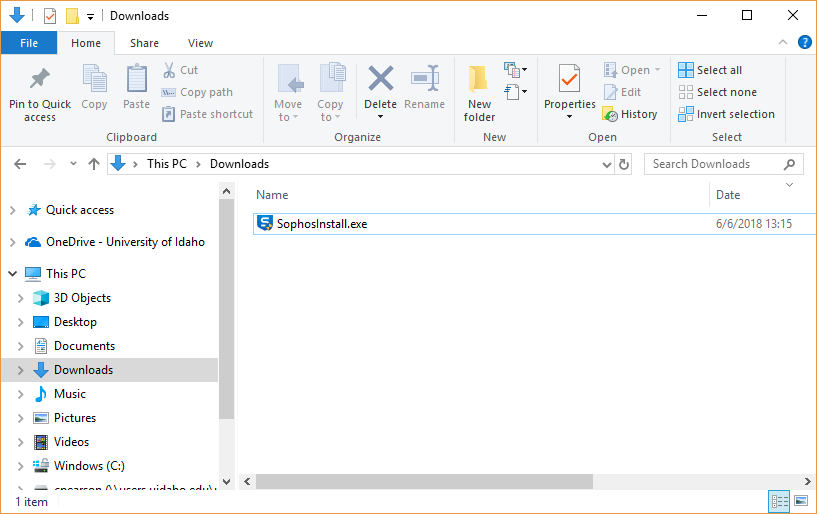 Screenshot of the Downloads folder.
