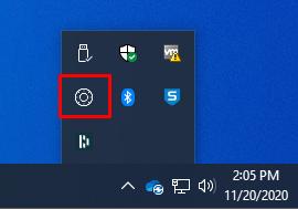 Safeguard systray icon