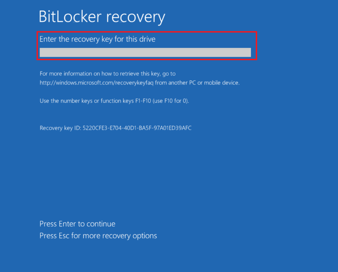 Enter the Recovery Key into the eight blank spaces on the Recovery Key Entry screen.